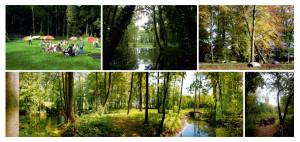 2012-11 Postkarten Dahlewitzer Ansichten-web_Seite_11